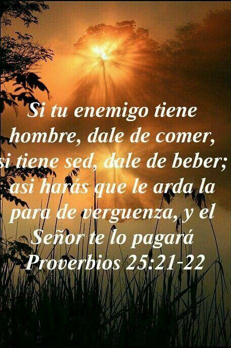El Amor De Dios Fue Derramado En Nuestros Corazones Nuestro Prójimo También Es Aquel Que Fue Enemigo Amaras A Tu Proverbios 25 Biblia Proverbios Proverbios