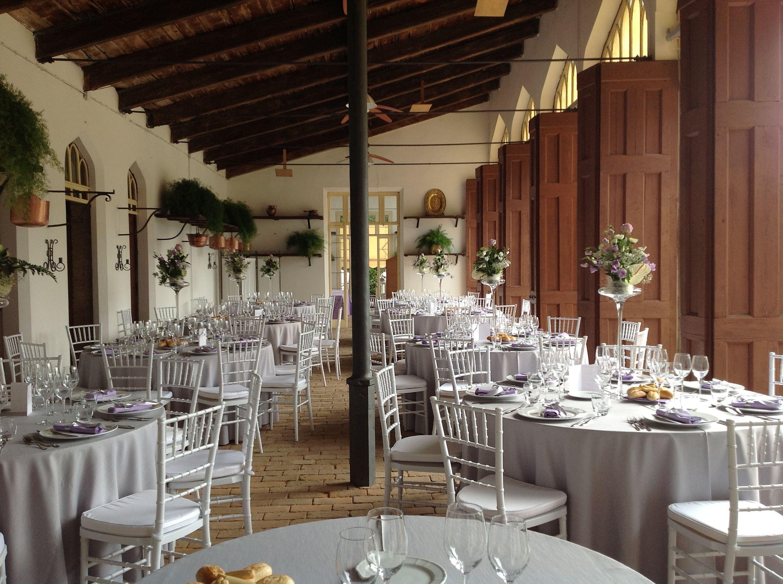 Chiavarina sedia prolipropilene sedie catering banqueting