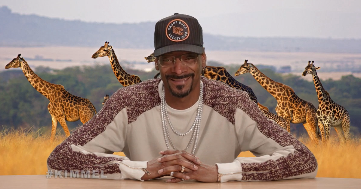 Snoop Dogg Narrates The Famous Baby Iguana Chase Scene From 'Planet Earth' , And It's Hilarious | Bored Panda