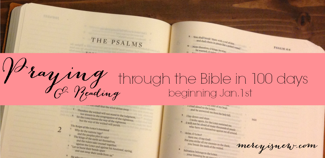 Join Me As We Pray And Read The Bible In 100 Days Printable Schedule And Hashtag To Follow Bible Read Bible 100th Day