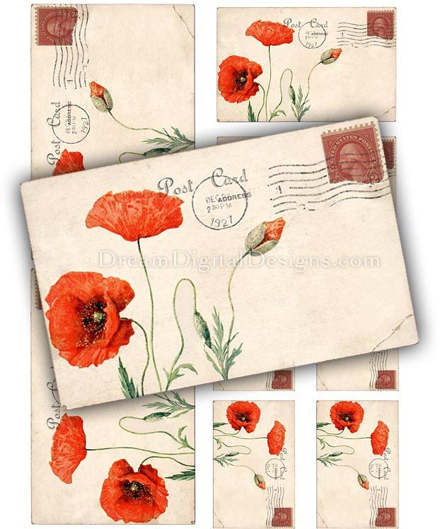 red poppy digital collage sheet printable images stationery rh pinterest com