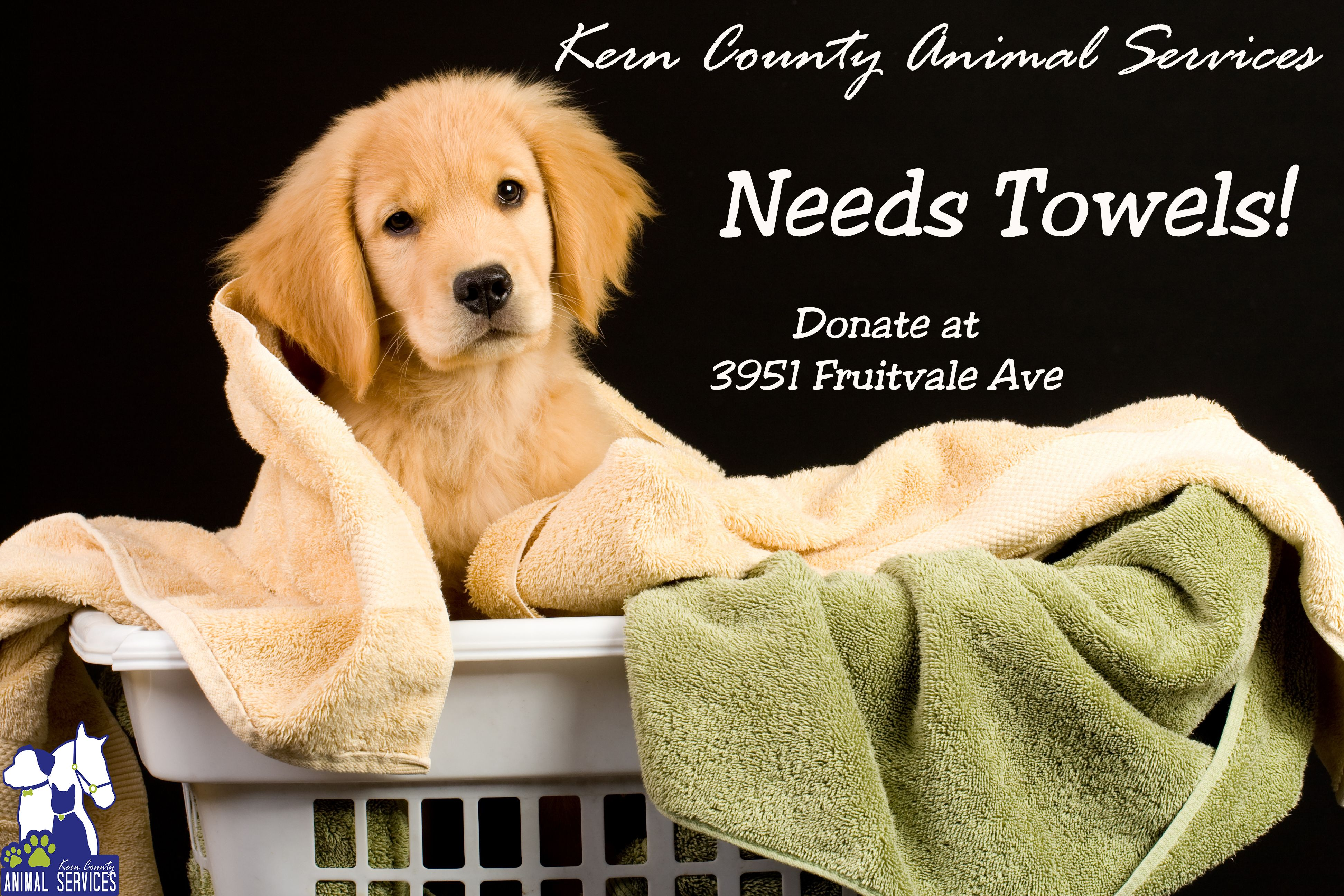 Donations Needed With Dog Picture Image