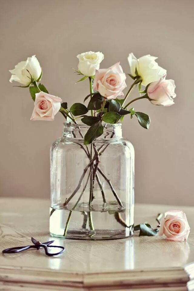 Best 25 Rose Vase Ideas On Pinterest Roses Vase Copper