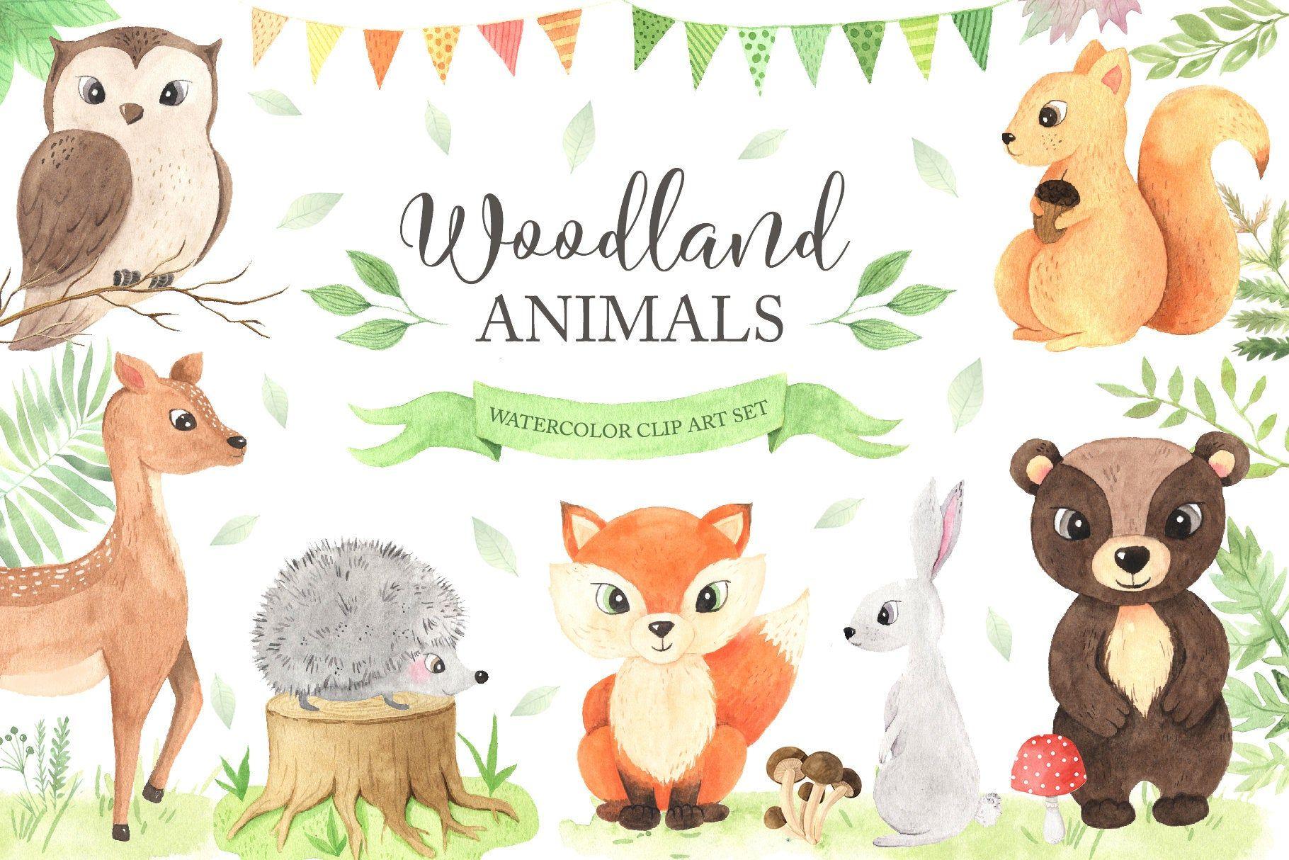 Woodland Animals Clipart Watercolor Baby Fox Bear Birds And Etsy Woodland Animals Animal Clipart Clip Art