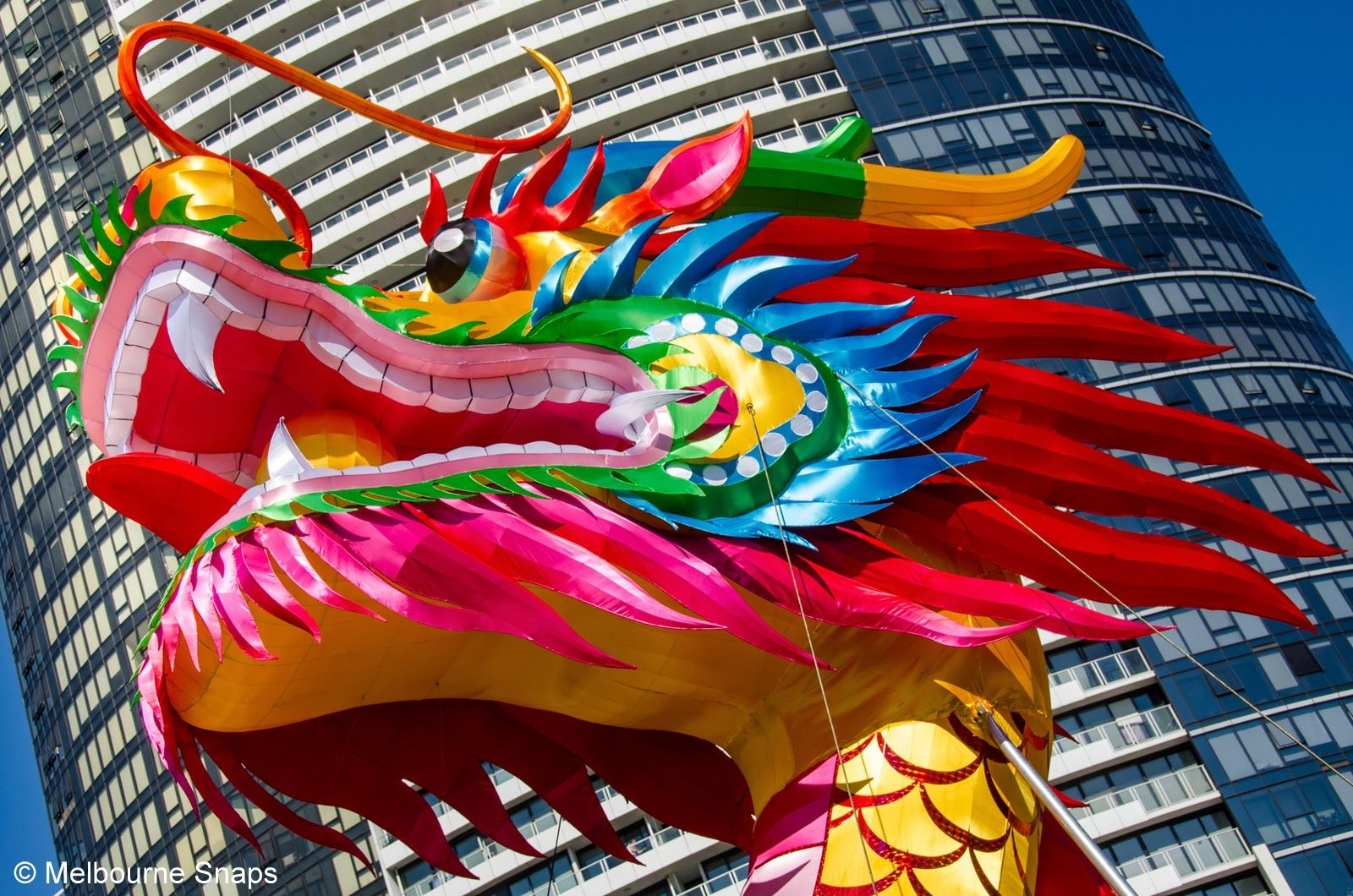CHINESE DRAGON AT DOCKLANDS Chinese new year dragon