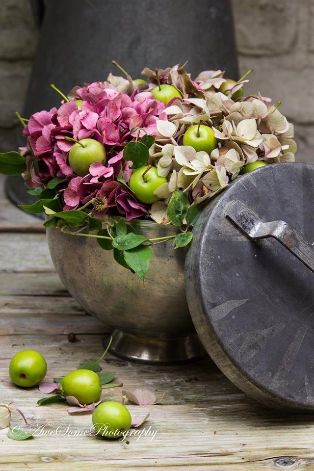 Hortensia zooo mooii
