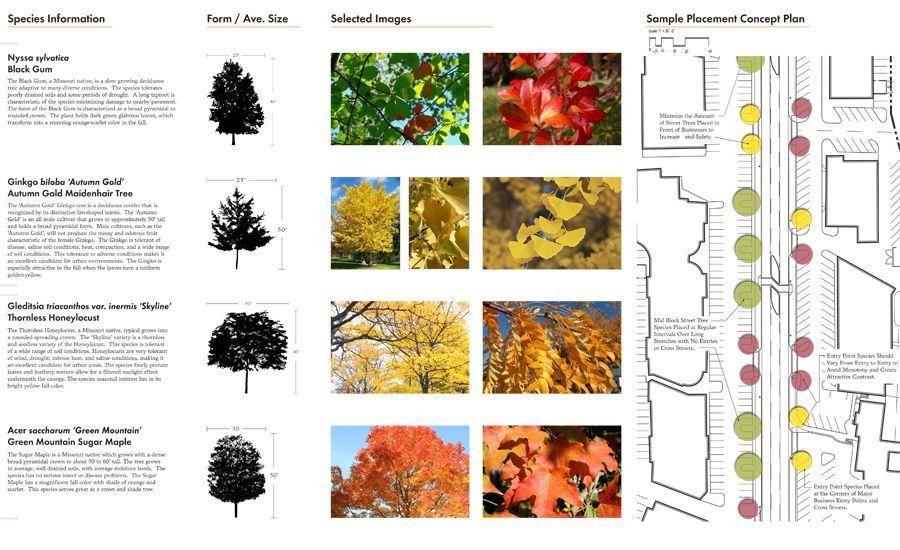 """Résultat de recherche d'images pour """"plant palette ..."""