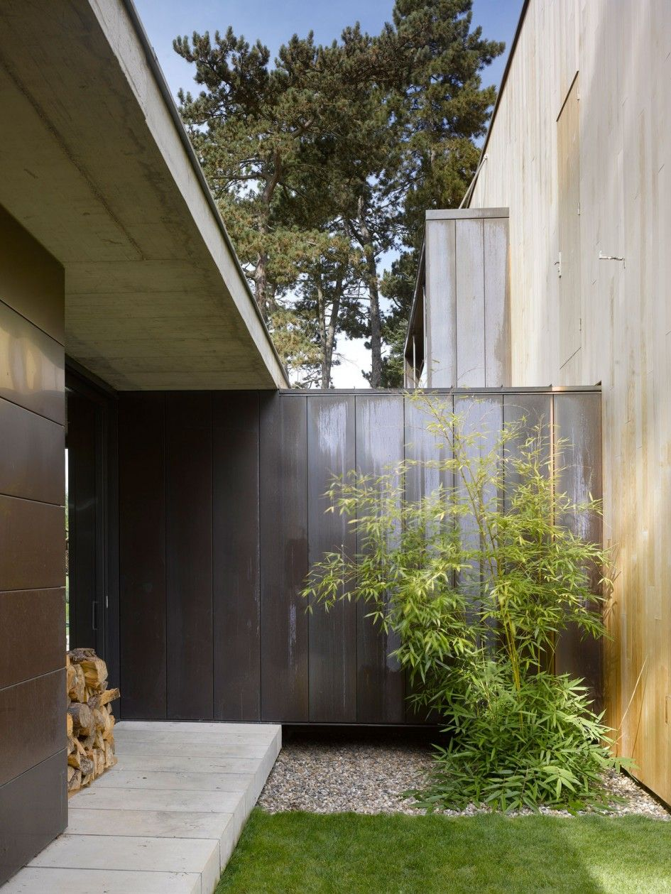 Architecture Bamboo Plants In The Corner Simple