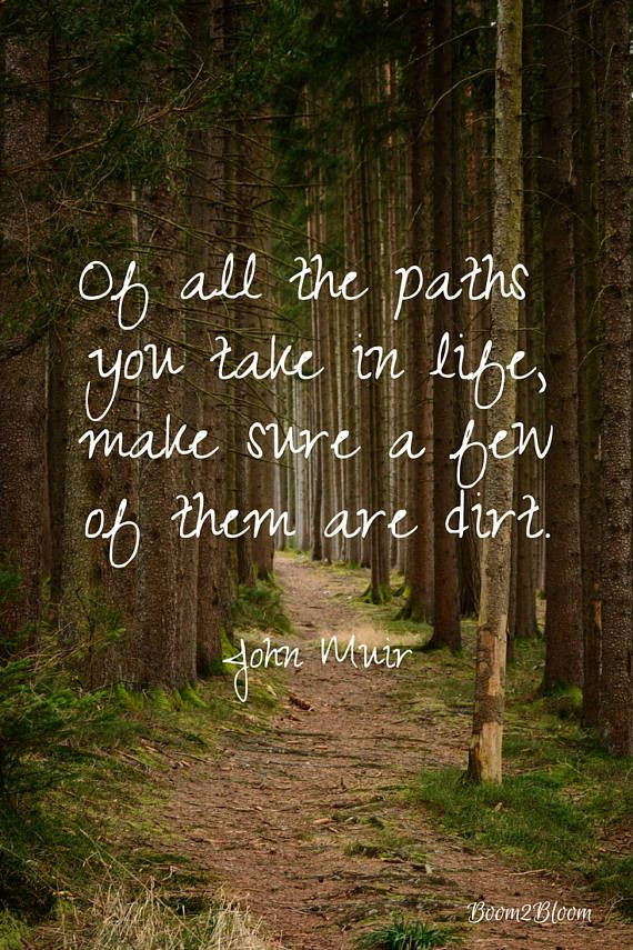 John Muir Quote Of All The Paths You Take In Life Make Sure A Few