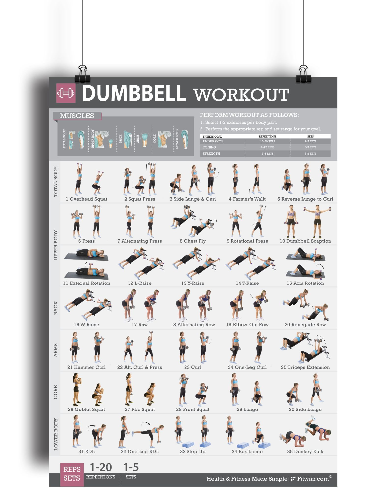Dumbbell Exercise Workout Poster - Laminated - 19x27 #dumbbellexercises