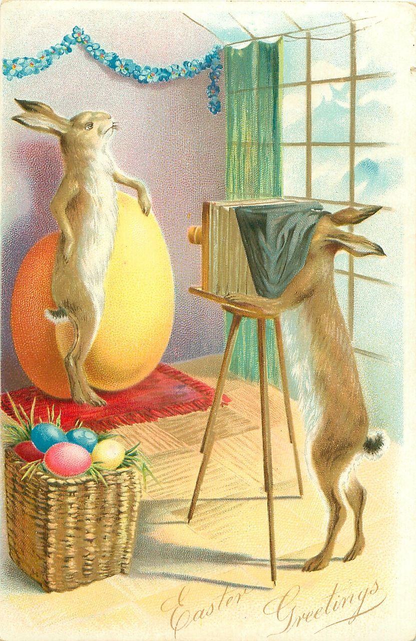 Открытка перевод, открытка гдр зайцы пасха красят яйца 1952 год