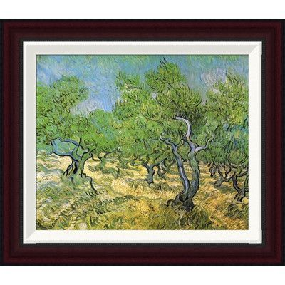 Global Gallery Olive Grove by Vincent Van Gogh Framed Painting Print