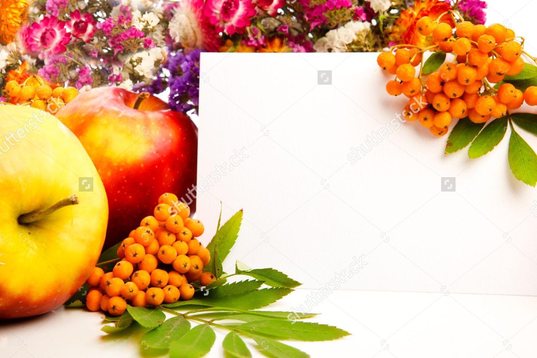 baby shower bbq invitation templates%0A Get Free Printable Orange Baby Shower Invitation Idea