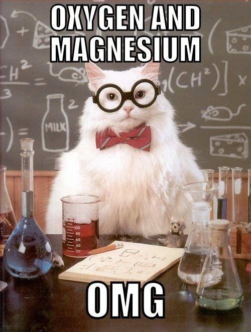 Chemistry Cat On Oxygen And Magnesium Nerd Jokes Corny Jokes Nerdy Jokes