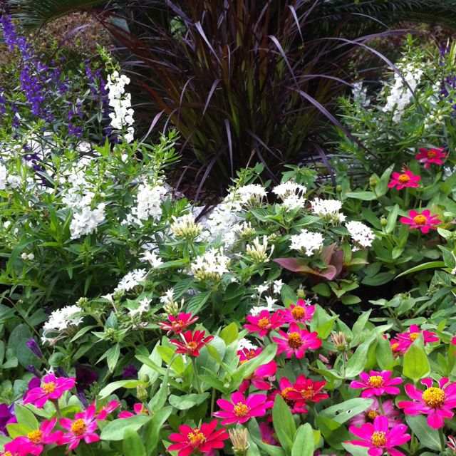 Diy Home Design Ideas Com: Beautiful Flower Garden