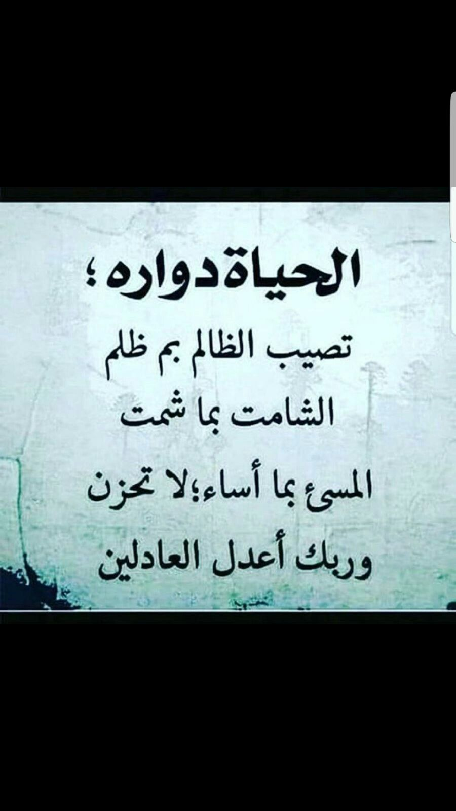 Pin By Toufik Zaid On مقهى احلى الكلمات و بريق حروفها Morning Quotes Islam Beliefs Quotes