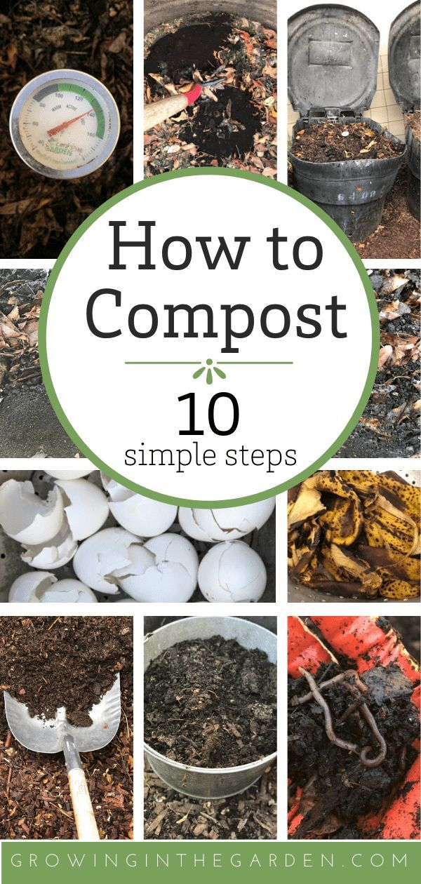 How to Compost: 10 Simple Steps | Growing In The Garden
