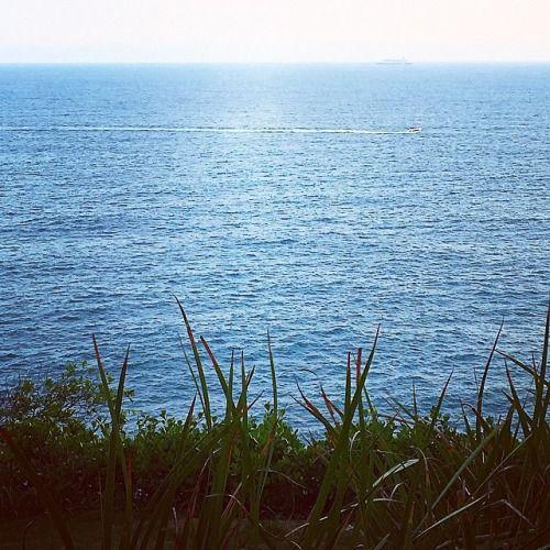 Sentindo o cheiro e o vento. #BomDia (em Penhasco Das...