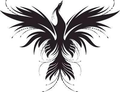 phoenix tattoo anka ku u d vmeleri pinterest ph nix. Black Bedroom Furniture Sets. Home Design Ideas