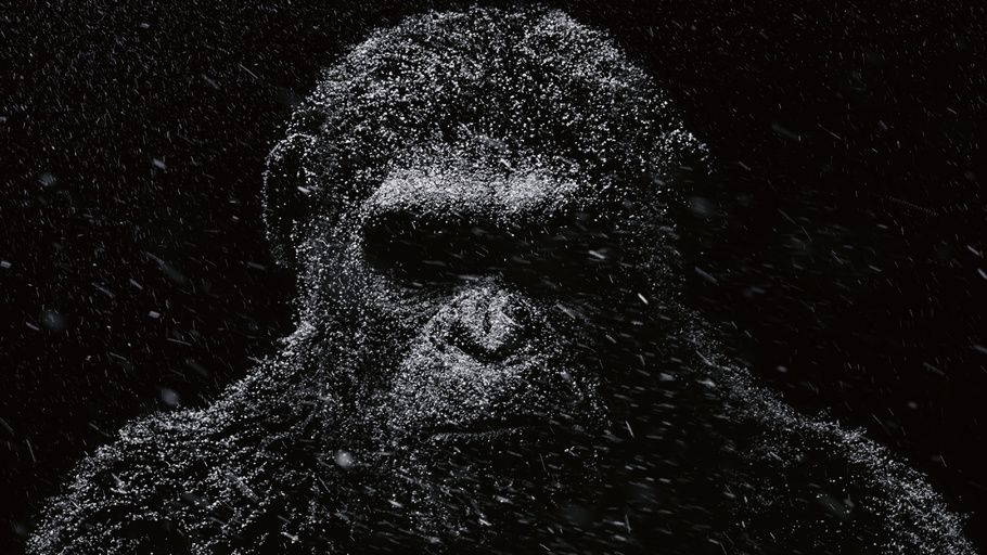 Caesar Monkey Monkey War For The Planet Of The Apes 4k