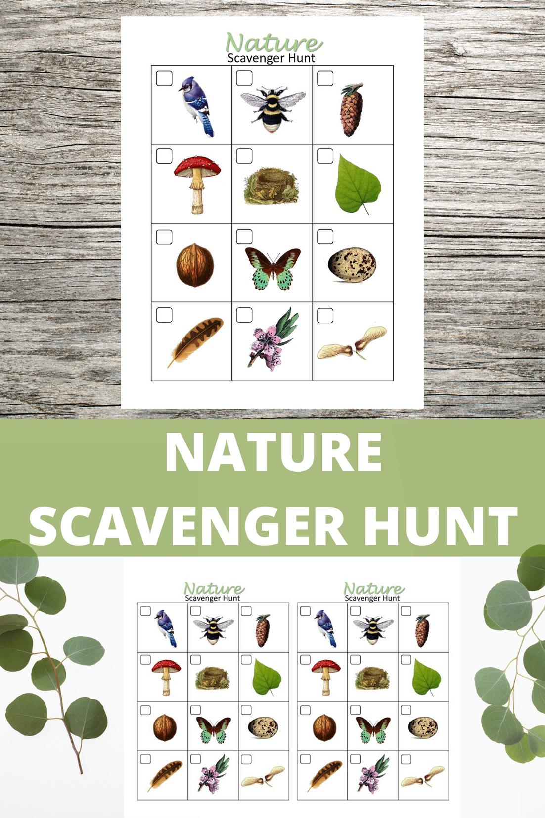 Nature Scavenger Hunt For Kids Printable Outdoor Game