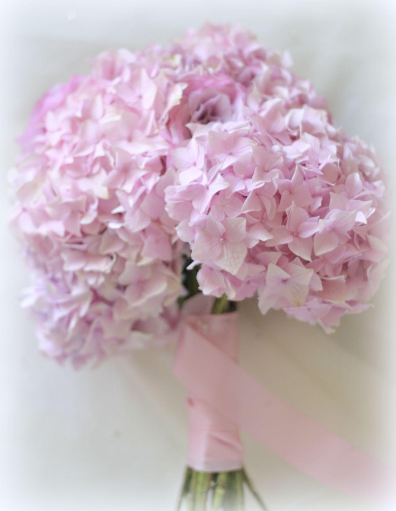 Pink hydrangea bouquet kerwin sarah 2014 pinterest pink hydrangea bouquet dhlflorist Choice Image