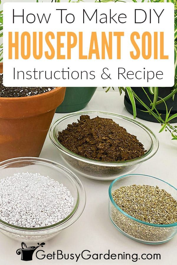 Making homemade all-purpose houseplant potting soil is easy and economical. So don't buy the cheap stuff, make your own mix instead! This DIY recipe is perfect for growing most houseplants, or you can adapt it to fit the needs of specific ones. You only need three simple-to-find ingredients (perlite or pumice, peat moss or coir, and vermiculite). Learn exactly how to make potting soil for indoor plants with these instructions, and get tips for storing the leftovers.