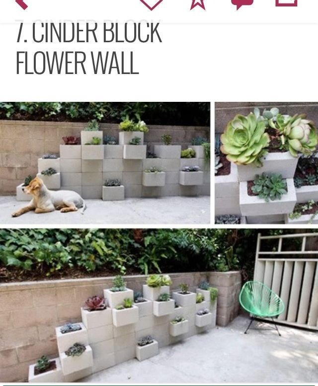 Cinder block planter wall cute to