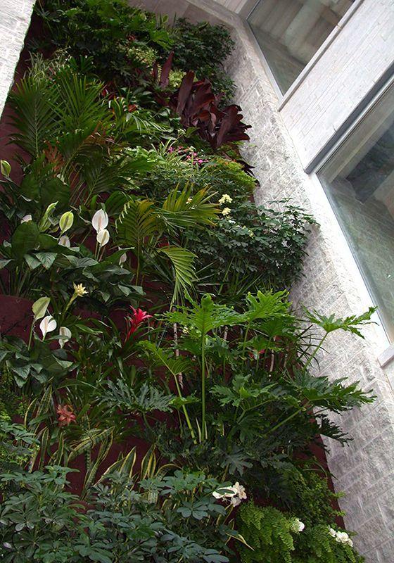Картинки по запросу stone wall with vertical garden