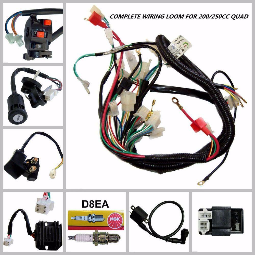 Advertisement Ebay Full Wiring Harness Loom Solenoid Coil Regulator Cdi 150 200 250cc Atv Quad Bike Atv Quads 250cc Atv Quad Bike