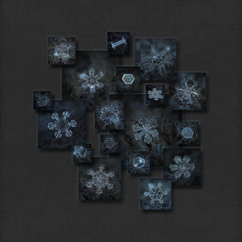 Closeup Snowflake Pictures Collage With 18 Macro Photos Of Real
