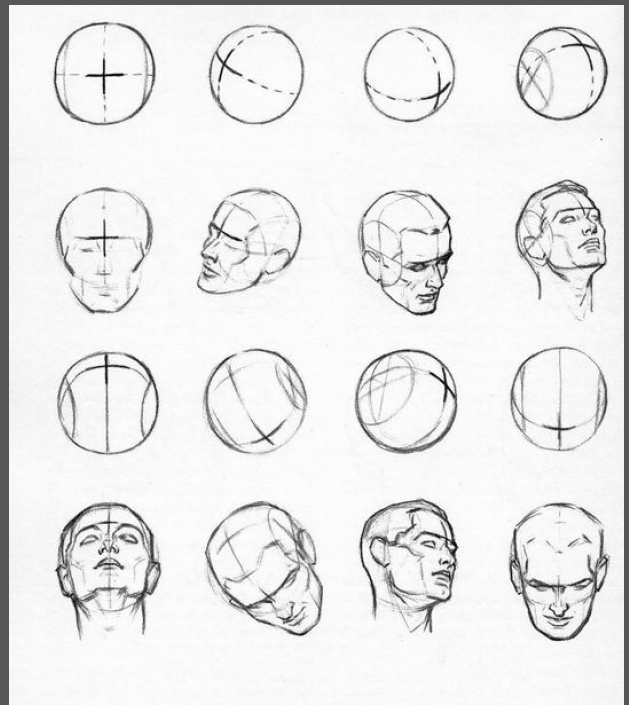 From Drawing The Head And Hands By Andrew Loomis Head Tutorial In