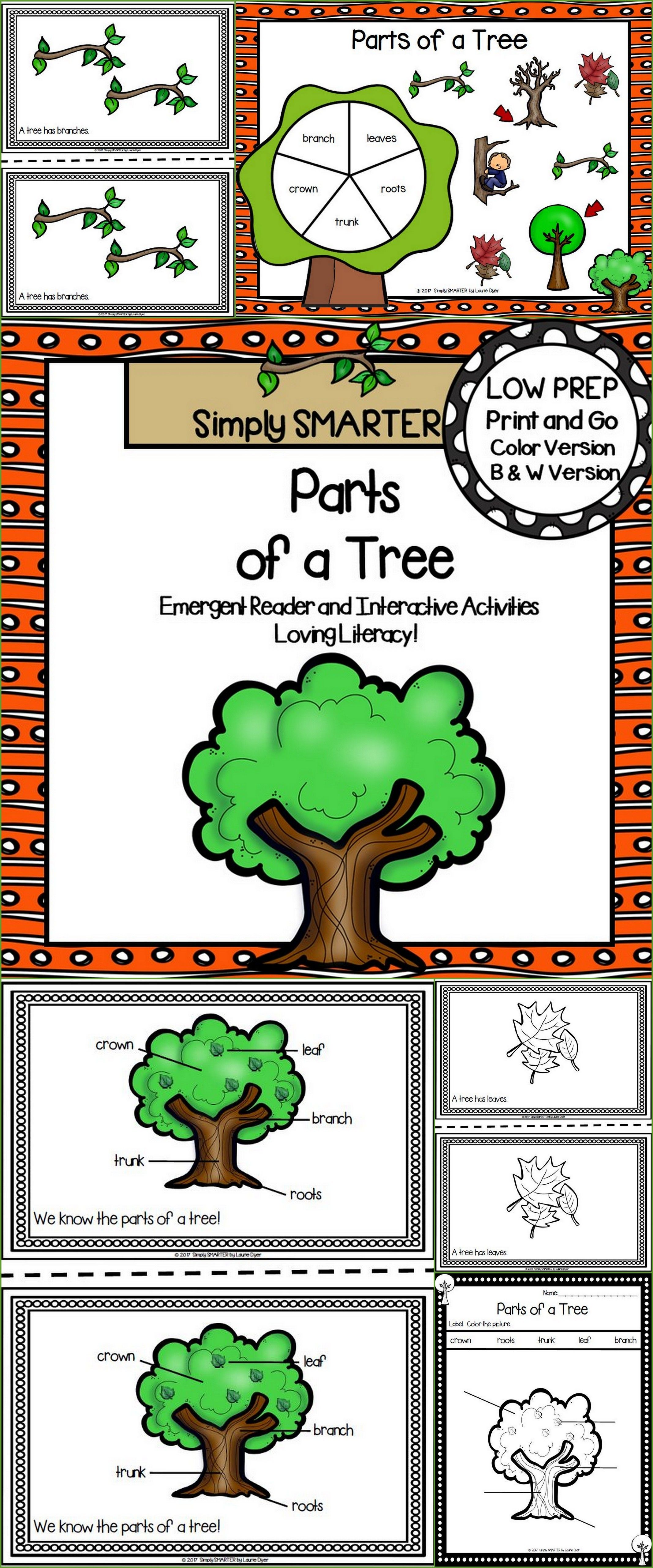 Parts Of A Tree Emergent Reader Book And Interactive Activities Emergent Readers Interactive Activities Activities Preschool reading activities online