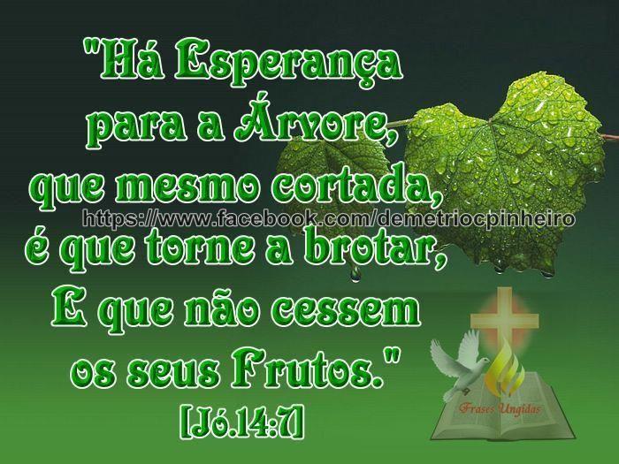 ORAÇÃO DA LIBERTAÇÃO http://www.youtube.com/watch?v=Z2WKx8SDFBM
