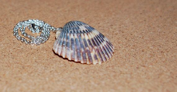 Tiger Shell Necklace with Silver Chain by JERIVANN on Etsy, $10.00