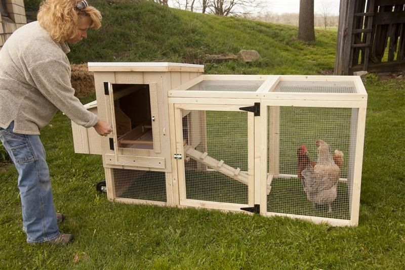 With mobile chicken coop plans you are just a few days for How to build a movable chicken coop