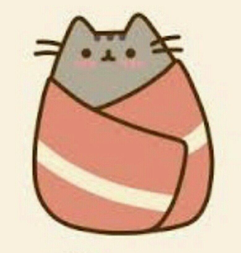 Pusheen the cat   girls rule   Pinterest