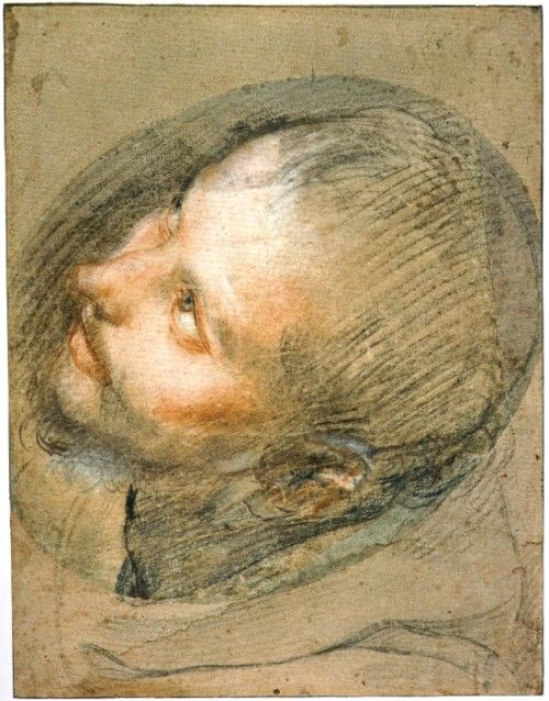 Study for the head of Saint Francis, c. 1571-76, black, red and white chalk and pink pastel, 34.5 x 28.8 cm., Edinburgh, National Galleries of Scotland