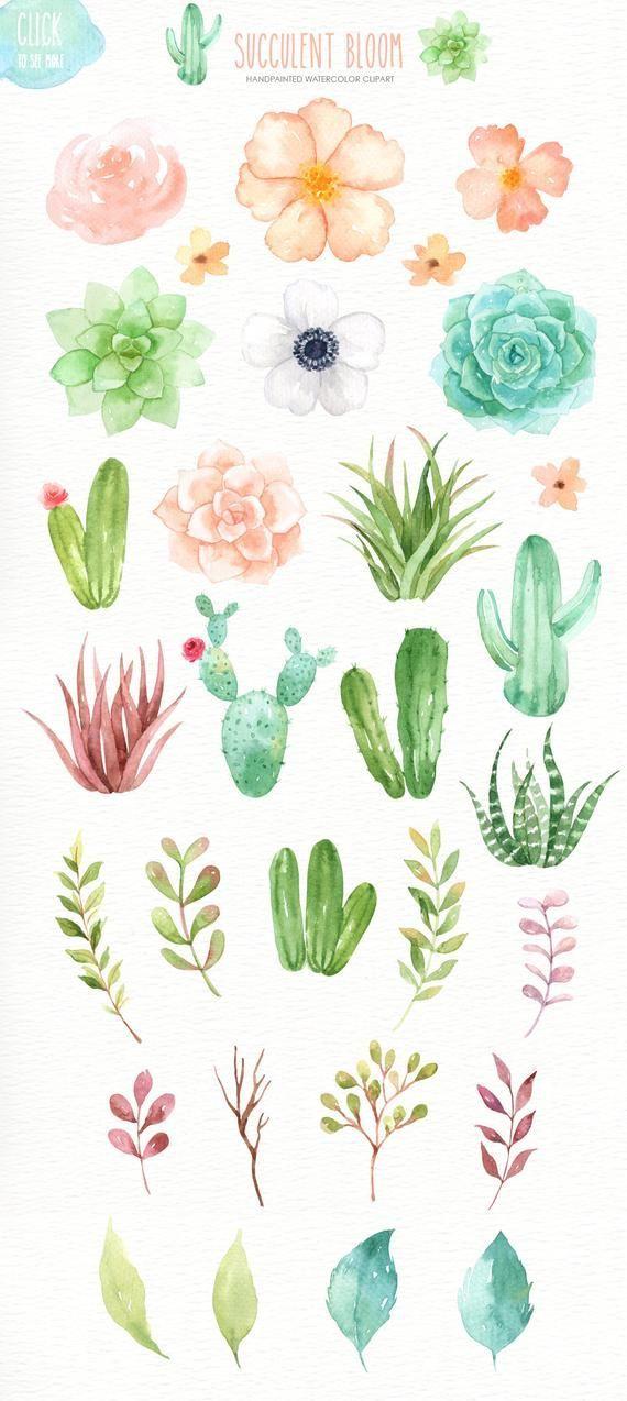 Photo of Saftige Blüte Aquarell Cliparts, Kaktus, Blume Clipart, botanische Pflanze, tropische Clipart…