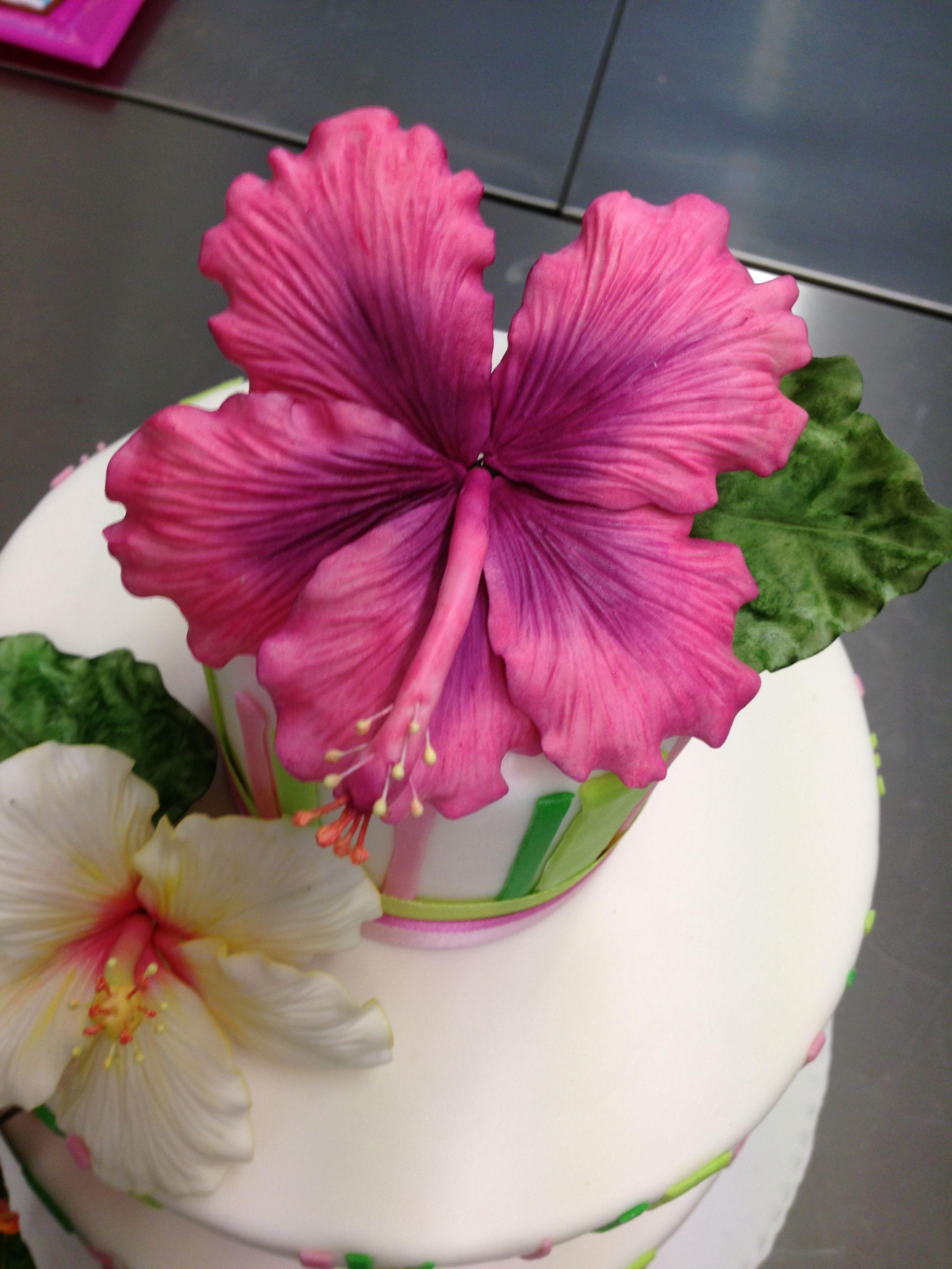 Hibiscus 3 torte fiori i make your cake pinterest ibitek a hibiscus 3 izmirmasajfo