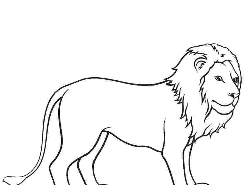 Coloring Picture Of Lion