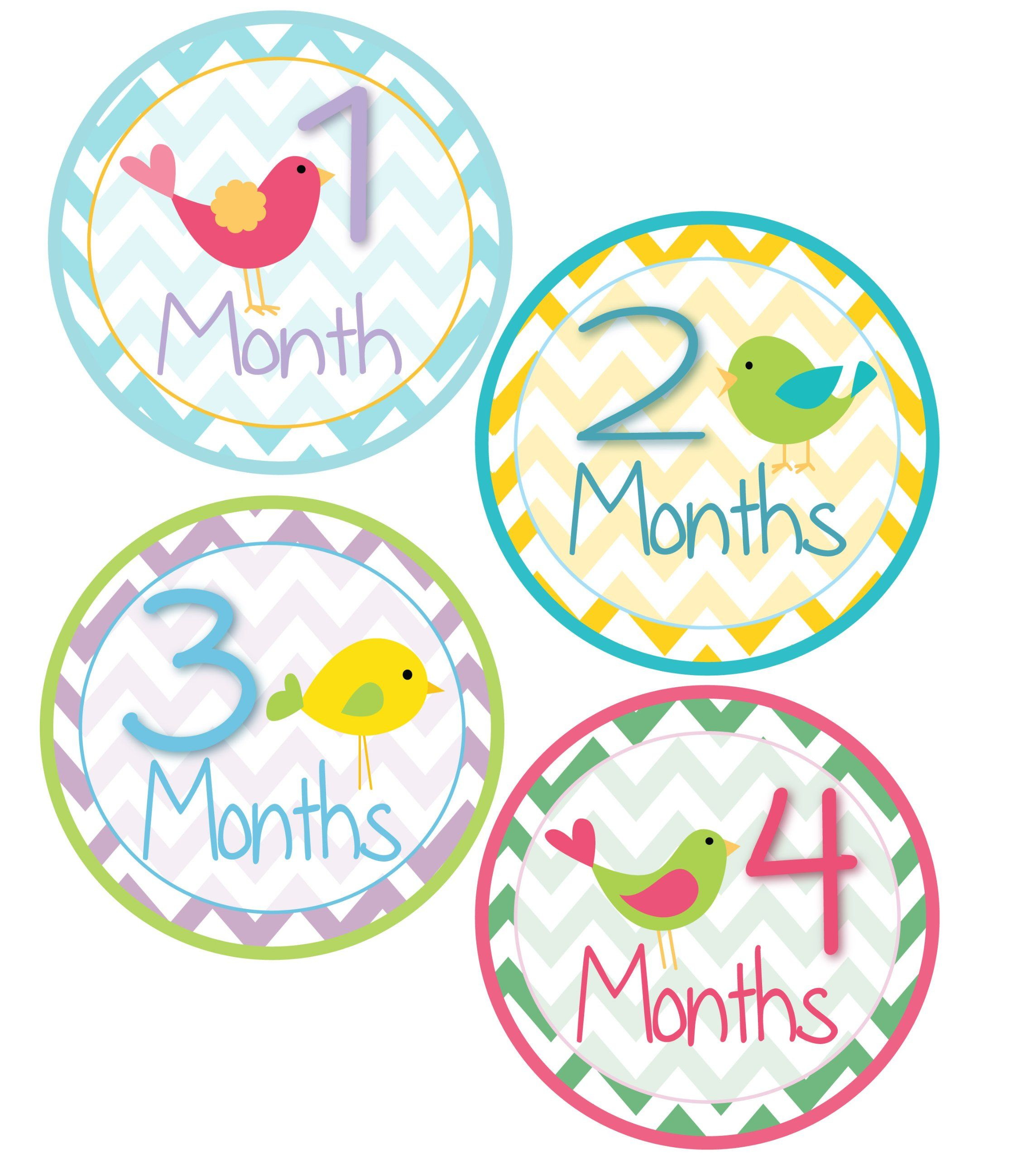 Happy 7 Months Baby Girl Quotes Amazon Wall Décor Baby