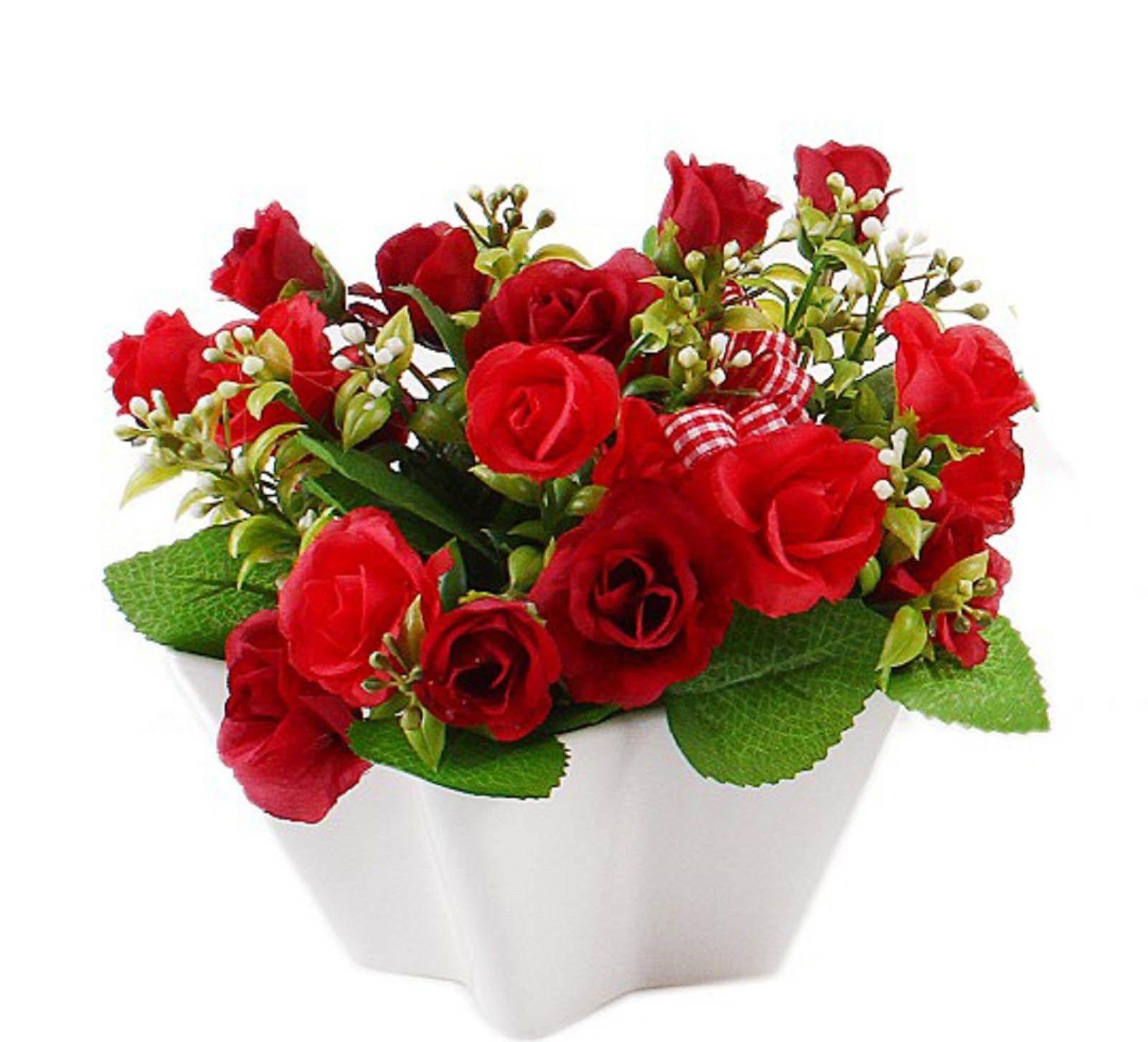 Декоративные комнатные розы в горшках: как посадить, выра ...