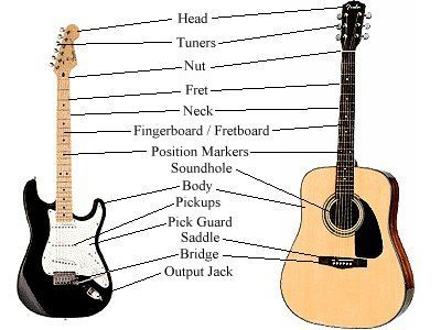 Guitar For Beginners Lessons Guitar Anatomy Free Guitar For Beginners Lessons Guitar Guitar For Beginners Guitar Lessons