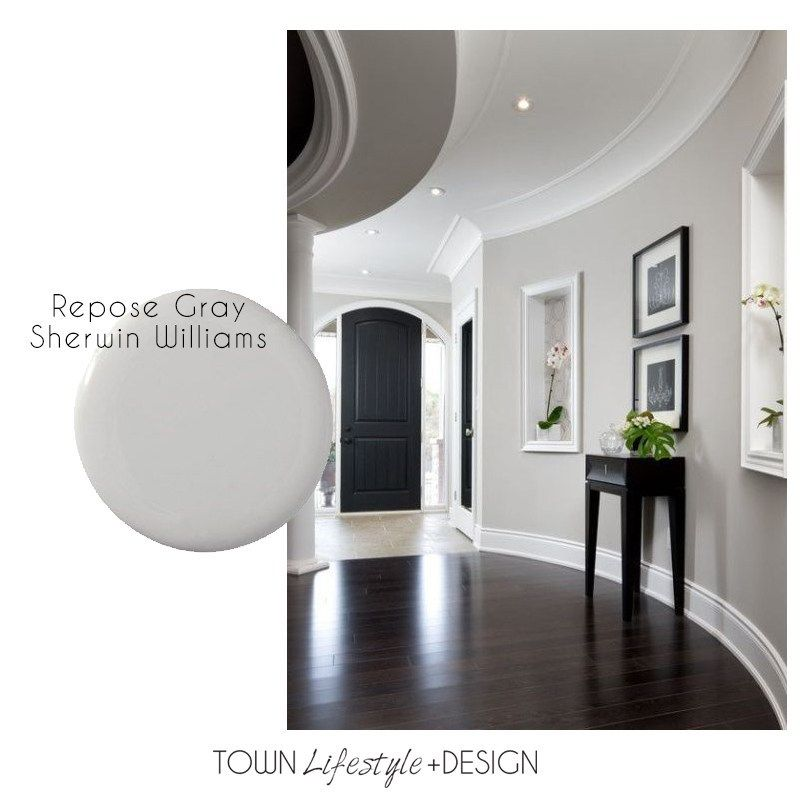 Best Neutral Paint Trends for your Living Room images