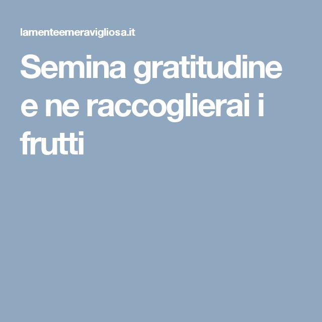 Semina gratitudine e ne raccoglierai i frutti