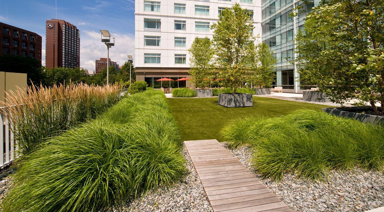 landscape-design-rooftop-garden-zen-associates-1440x797.jpg (1440 ...