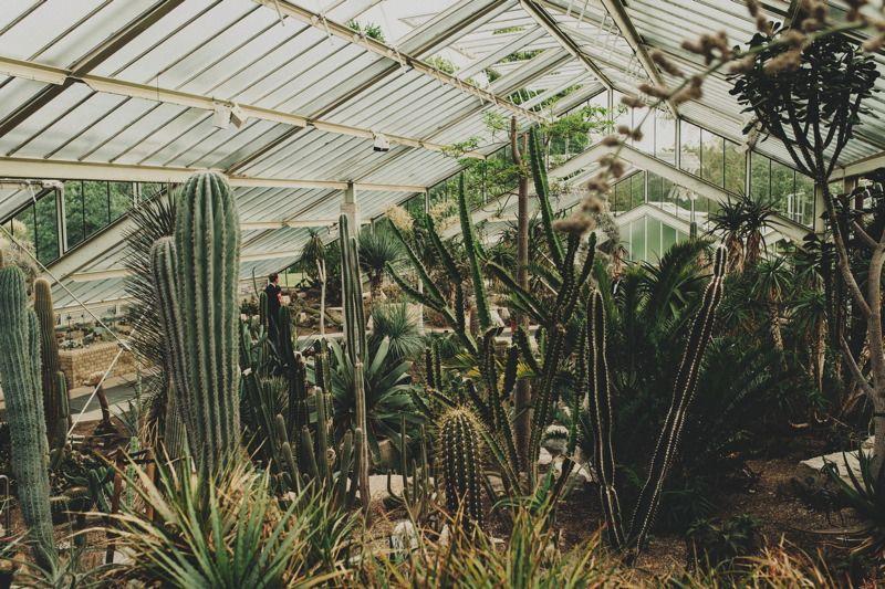 Wedding Venues in London   Royal Botanic Gardens Kew   UK ...