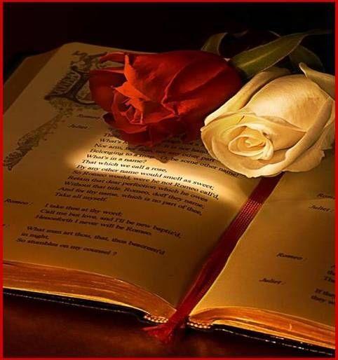 Foto Libro Y Rosas 30 01 2009 00 09 59 Fotos De Nostalgica Romeo And Juliet Juliet Shakespeare
