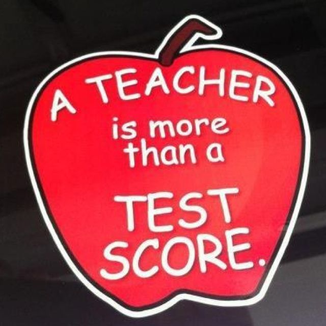 Teachers ARE more than test scores!